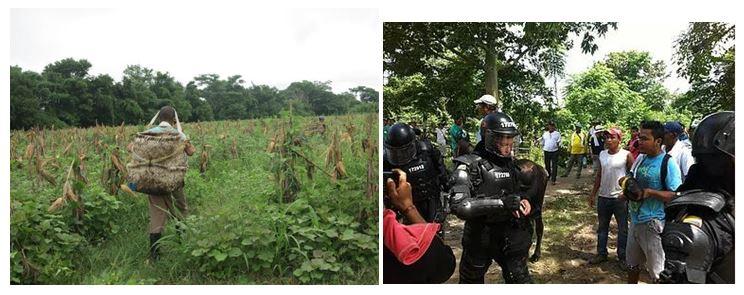 Crisis humanitaria en la comunidad campesina de El Guayabo